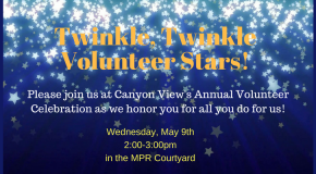 volunteer celebration flyer