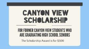 cv scholarship logo